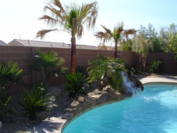Custom pool Area and landscaping